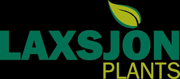Laxsjon Plants
